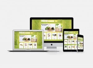 tiendas online zaragoza amgcreativo